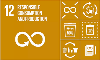 Graphics of 5 UN Global Compact Sustainable Development Goals